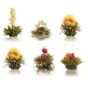 THÉ 6 Fleurs de Thé blanc Abloom