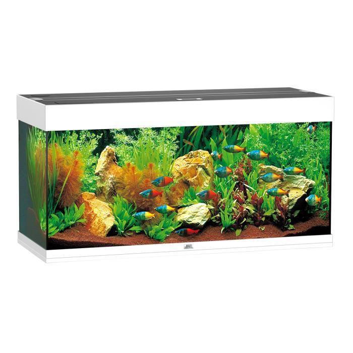 Aqua rio 180 101x41x50 blanc achat vente aquarium for Vendeur aquarium
