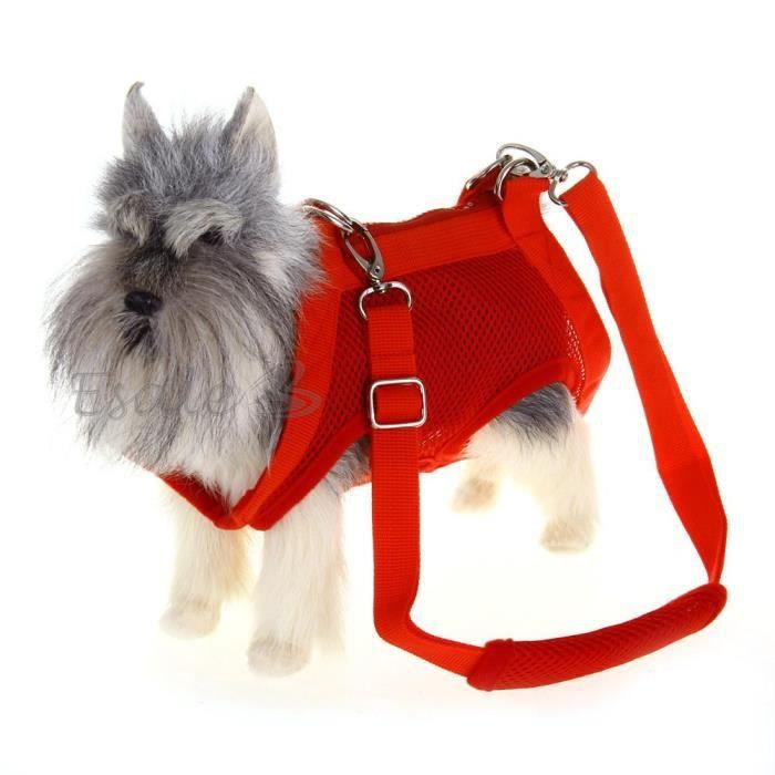 Harnais laisse corde sac de transport v tement achat - Laisse corde gros chien ...
