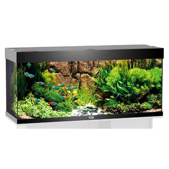 Aqua rio 240 120x40x55 noir achat vente aquarium for Vendeur aquarium