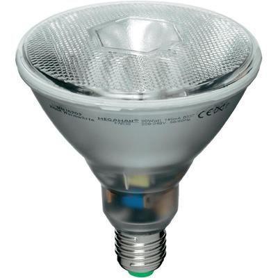 acheter ampoules megaman