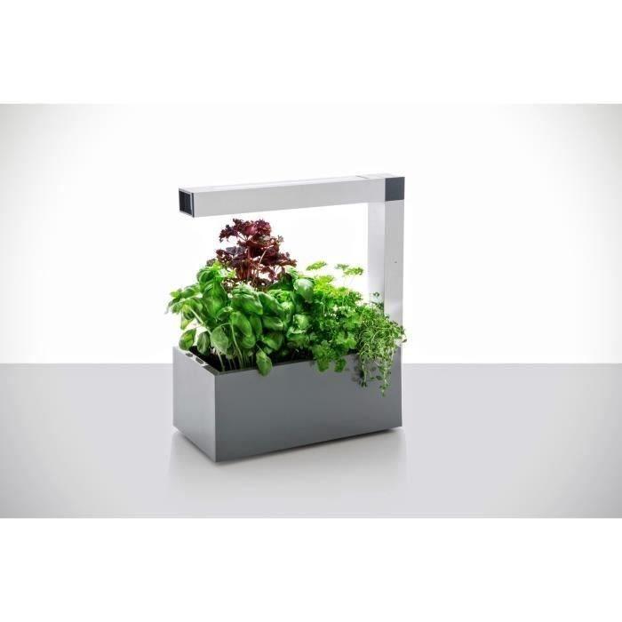 potager d 39 int rieur herbie led gris smart et design pour. Black Bedroom Furniture Sets. Home Design Ideas