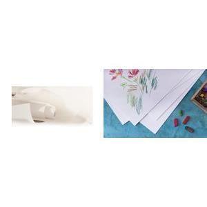 canson rouleau papier dessin c grain 180 g m achat vente papier millim tr canson. Black Bedroom Furniture Sets. Home Design Ideas