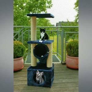 Filet de s curit pour chat 2 m x 4m tendeur 13m achat vente filet grille de protect filet - Filet fenetre chat ...