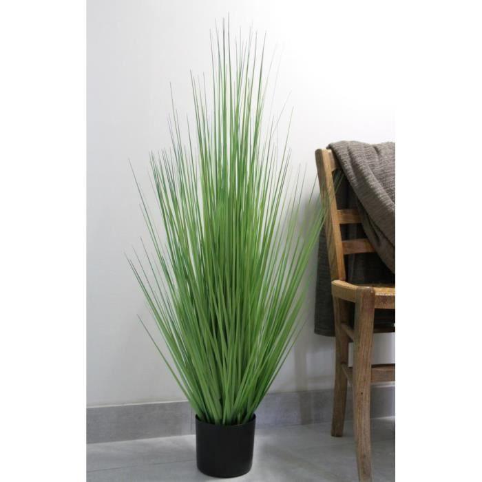 Gramin es vertes en pot achat vente plante pouss e for Achat plante verte en ligne