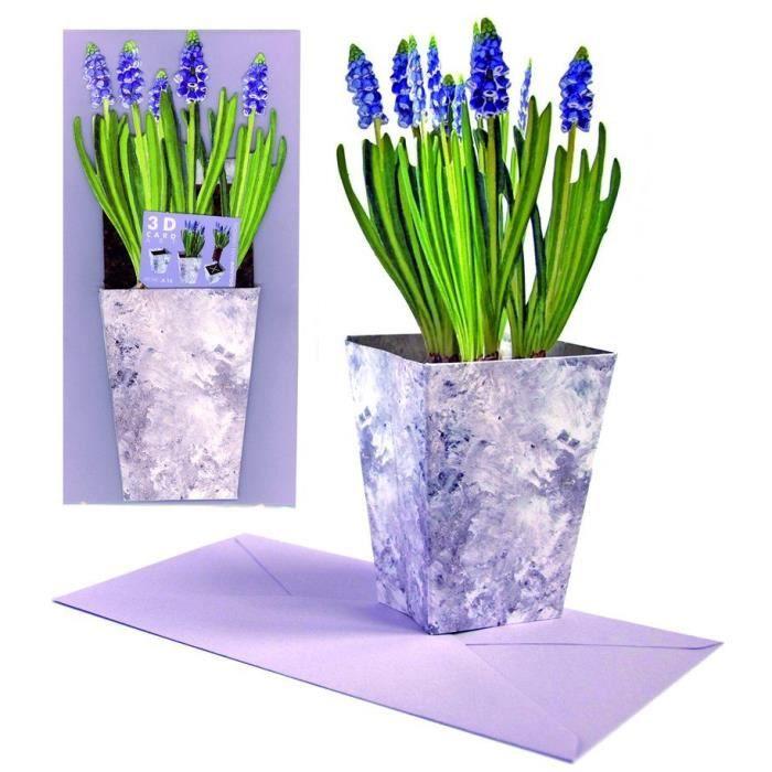 carte de voeux pot de jacinthe violete 3d achat vente carte postale carte de voeux pot de. Black Bedroom Furniture Sets. Home Design Ideas