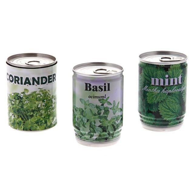Canette plante aromatique pret a pousser achat vente - Pret a pousser avis ...