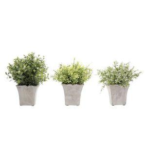 OBJET DÉCORATIF SEMA Lot de 3 plantes artificielles Fougeres 9x22x