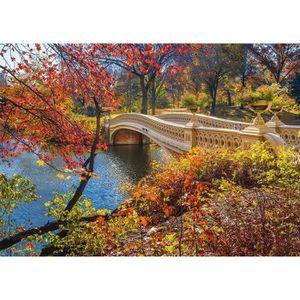 SCHMIDT SPIELE Puzzle Adulte Promenade A Central Park- New York- 1000 Pi?ces