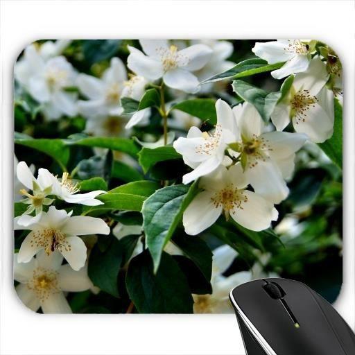 tapis de souris fleurs blanches prix pas cher cdiscount. Black Bedroom Furniture Sets. Home Design Ideas