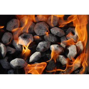 "BARBECUE LOKKII Briquettes barbecue ""Light the Bag"" 100% b"