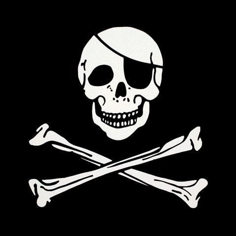 Drapeaux de pirate en nylon