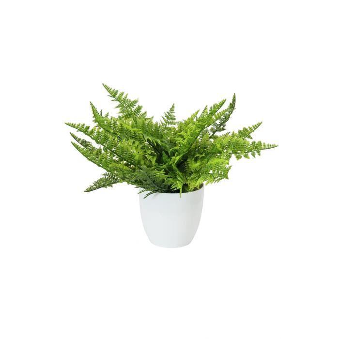 fougere en pot 22 feuilles 33cm achat vente fleurs. Black Bedroom Furniture Sets. Home Design Ideas