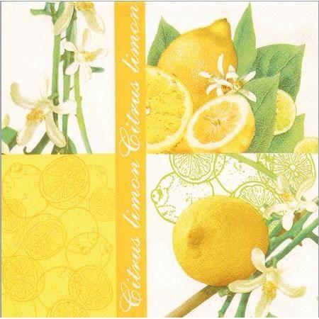 Lot de 2 serviettes en papier motif citron achat vente serviette de table cdiscount - Serviette en papier motif ...