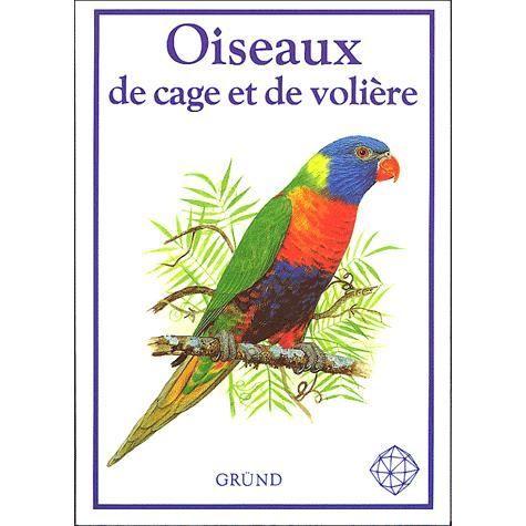 D coration cage a oiseaux pas cher occasion strasbourg for Cage a oiseaux decorative pas cher