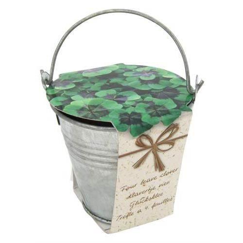 kit de plantation semis graines tr fle 4 feuilles pot. Black Bedroom Furniture Sets. Home Design Ideas