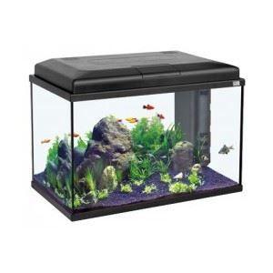 Aquarium 100 litres achat vente aquarium 100 litres for Gros aquarium pas cher