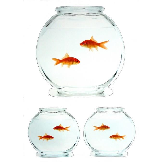 Stickers muraux poissons rouge et bocaux x 3 achat for Vente poisson rouge tunisie