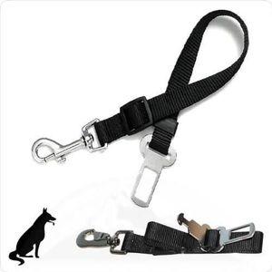 EBI Adaptateur ceinture de sécurité pour harnais Dog secure