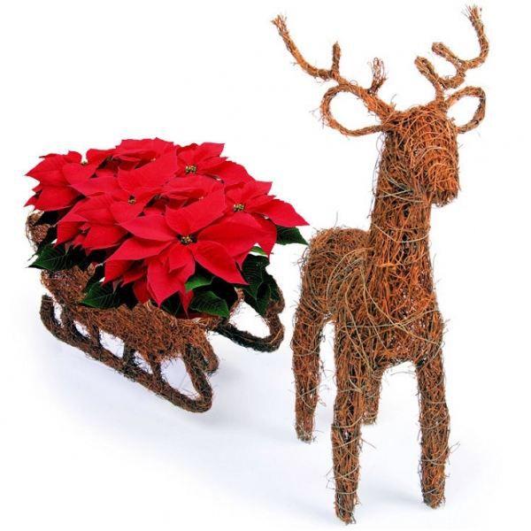 Ensemble de d coration pour no l renne et luge achat for Achat decoration de noel