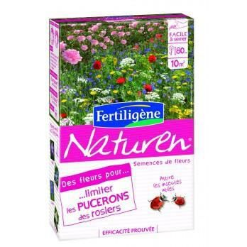 des fleurs pour limiter les pucerons des rosiers achat vente d sherbant herbicide des. Black Bedroom Furniture Sets. Home Design Ideas
