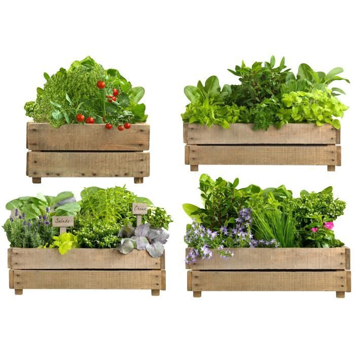 Potager stickers muraux cuisine 2 planches achat vente stickers cdiscount for Planche potager