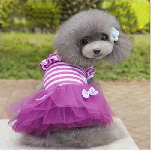 tutu chien achat vente tutu chien pas cher les soldes sur cdiscount cdiscount. Black Bedroom Furniture Sets. Home Design Ideas