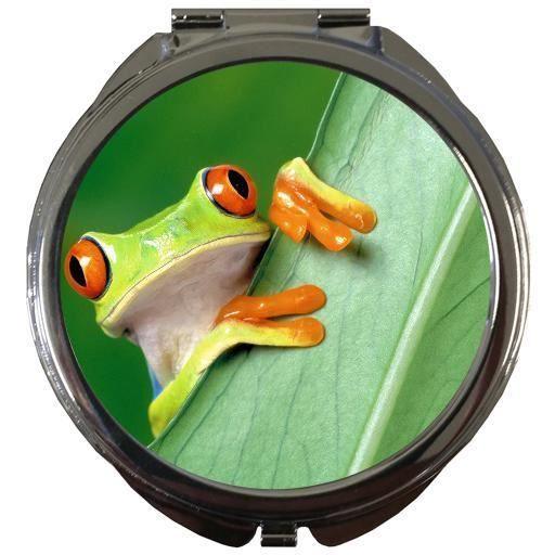Miroir de poche rond grenouille sur une feuille verte for Se voir dans un miroir
