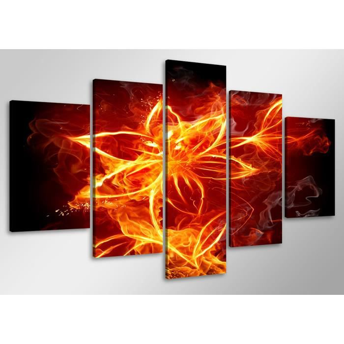 Tableau moderne imprim 100x50 cm fleur en feu achat vente tableau to - Vente tableau moderne ...