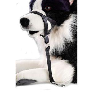 D&D Licol S - 35-44x4,5x26cm - Noir - Pour chien