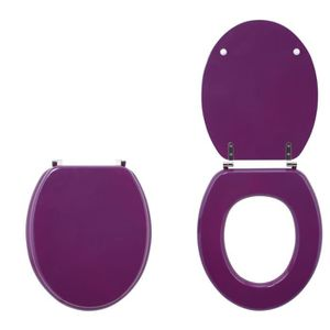 abattant wc wirquin abattant colors line prune - Coloration Prune