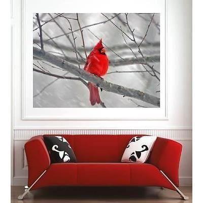 Affiche poster d coration murale oiseau r f 123285 6 for Decoration murale oiseau