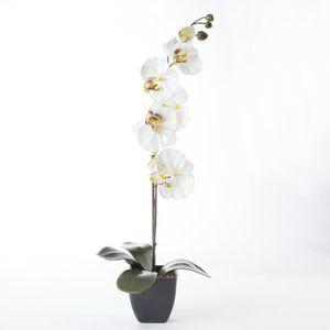 orchidee artificielles achat vente orchidee artificielles pas cher cdiscount. Black Bedroom Furniture Sets. Home Design Ideas