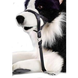 D&D Licol M - 38-48x6x34cm - Noir - Pour chien