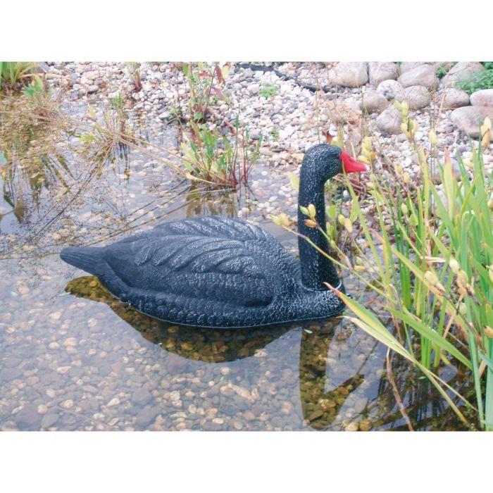 Cygne noir pour d coration de bassin de jardin achat vente bassin d 39 ext rieur cygne noir for Bassin de jardin d occasion