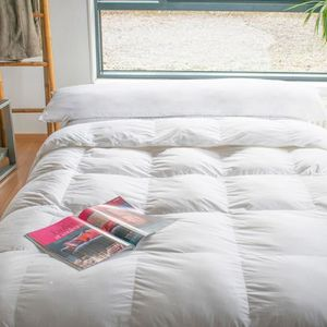 oreiller traversin achat vente oreiller traversin pas. Black Bedroom Furniture Sets. Home Design Ideas