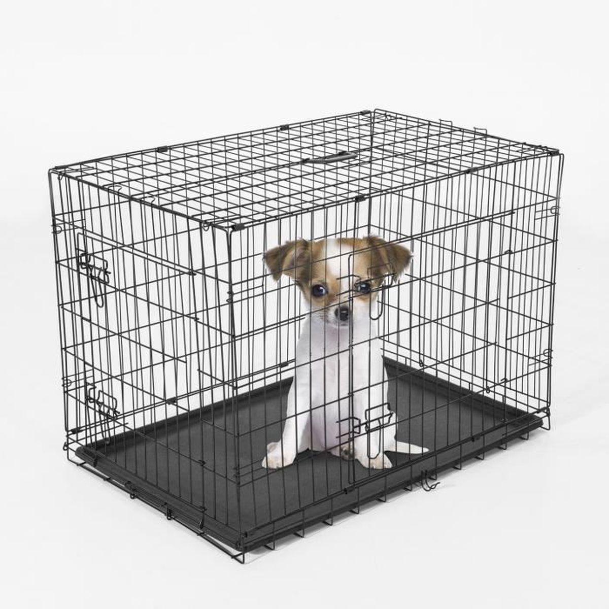 cage caisse transport pour chien pliable 2 portes fil d acier avec plateau poign e 60l x 46l x. Black Bedroom Furniture Sets. Home Design Ideas