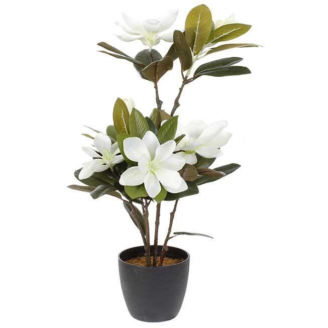 Plante artificielle fleurs magnolia et pot 60cm achat for Fleurs vente