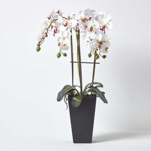 orchidee artificielle achat vente orchidee artificielle pas cher cdiscount. Black Bedroom Furniture Sets. Home Design Ideas