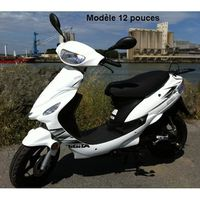 SCOOTER SCOOTER 50CC 2 TEMPS  GROSSES ROUES PRET A ROULER