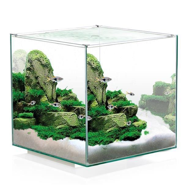 Aquarium design tout quip 14 litres achat vente for Aquarium design pas cher