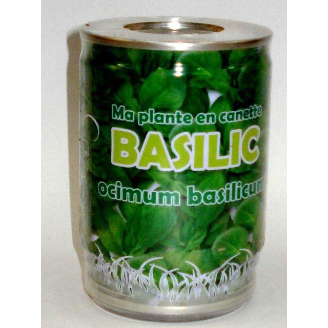 ma plante en canette basilic achat vente graine semence ma plante en canette basilic. Black Bedroom Furniture Sets. Home Design Ideas
