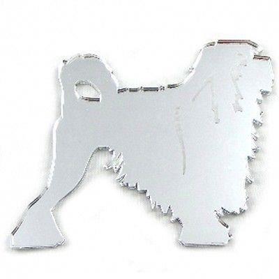 Miroir lowchen chien 20 cm x 16 cm achat vente for Miroir acrylique incassable