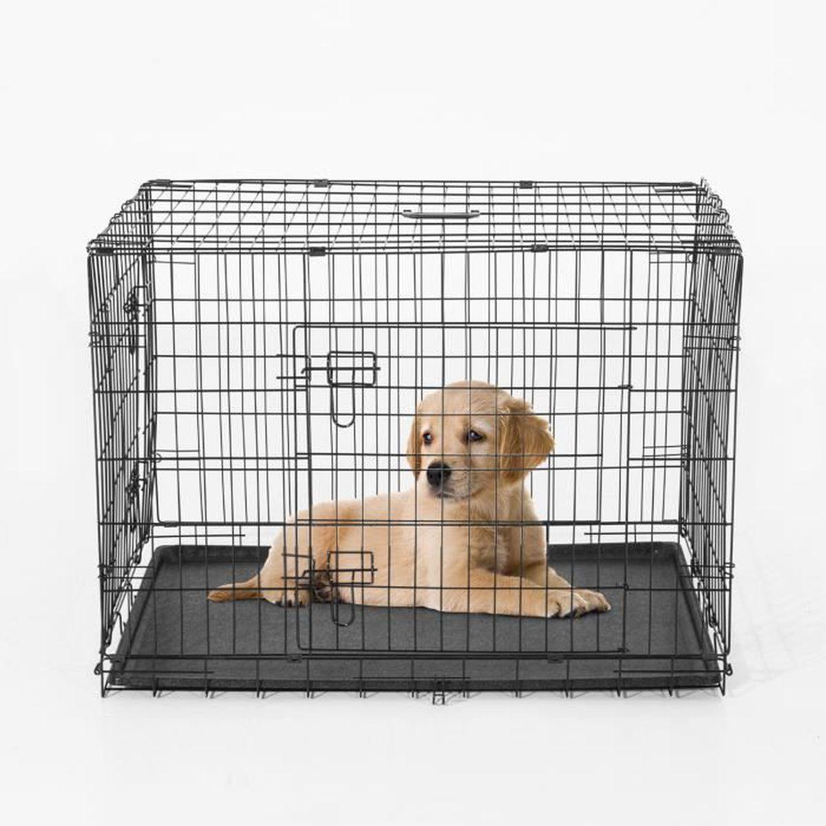 cage caisse transport pour chien pliable 2 portes fil d. Black Bedroom Furniture Sets. Home Design Ideas