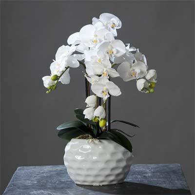 Orchidee artificielle creme 3 hampes en pot cer achat for Vente fleurs artificielles