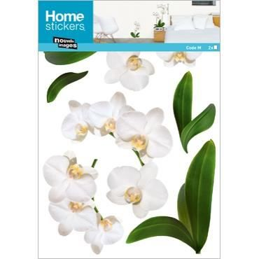 Stickers muraux adhesif xxl orchidees blanches achat - Decoration stickers muraux adhesif ...