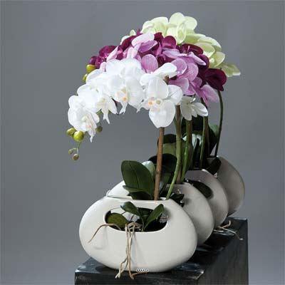 orchidee artificielle creme vert 1 hampe pot ce achat vente fleur artificielle les soldes. Black Bedroom Furniture Sets. Home Design Ideas