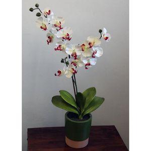 Orchidee artificielle achat vente orchidee artificielle pas cher cdiscount - Arrosage orchidee en pot ...
