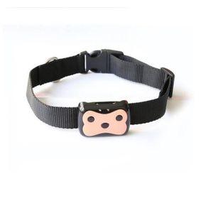 collier gps pour chats achat vente collier gps pour. Black Bedroom Furniture Sets. Home Design Ideas