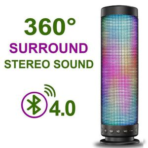 ENCEINTE NOMADE Enceinte Bluetooth 4.0 Haut-parleur portable Sans